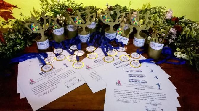 Equipe de Dança de Cadeiras de Rodas traz 16 medalhas para Santos